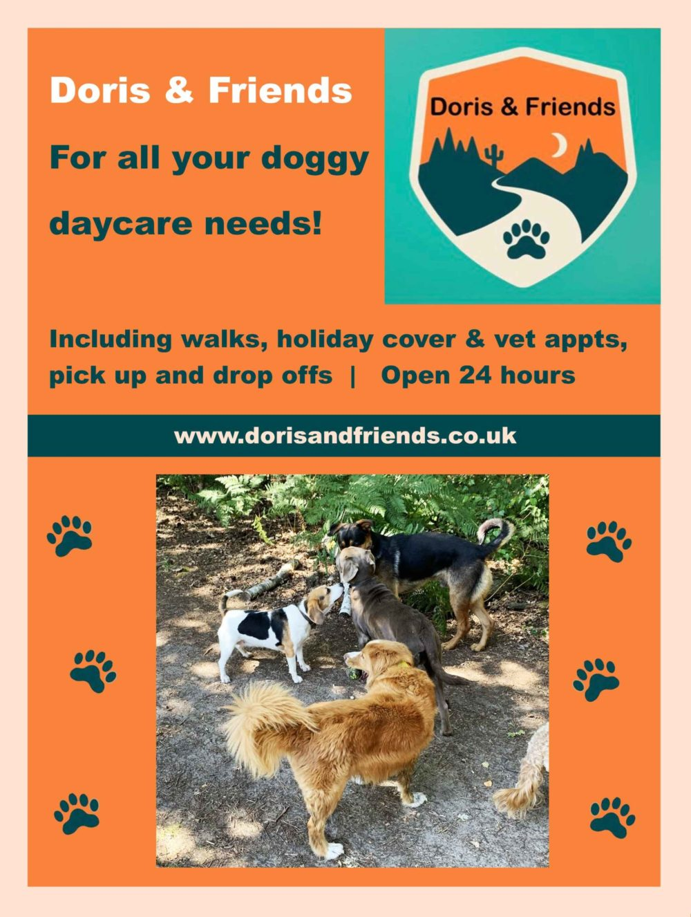 doris-and-friends daycare for dog-