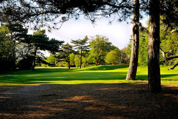 Wimbledon-Common-Golf-Club-fairways-destroyed